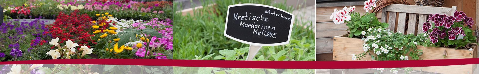 Kloster Maria Bildhausen - 39-Slider5.jpg